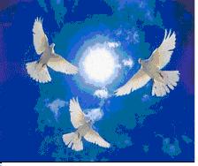 HÒA BÌNH- ĐIỂM ĐẾN CỦA TÌNH HỮU NGHỊ VIỆT - RU